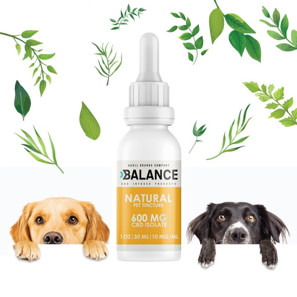 CBD Using For Dog Allergies