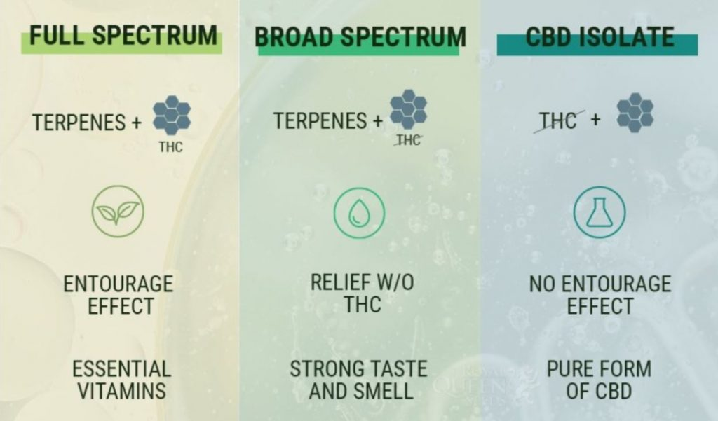 CBD Isolate vs. CBD Full Spectrum: Which CBD Should I Take?