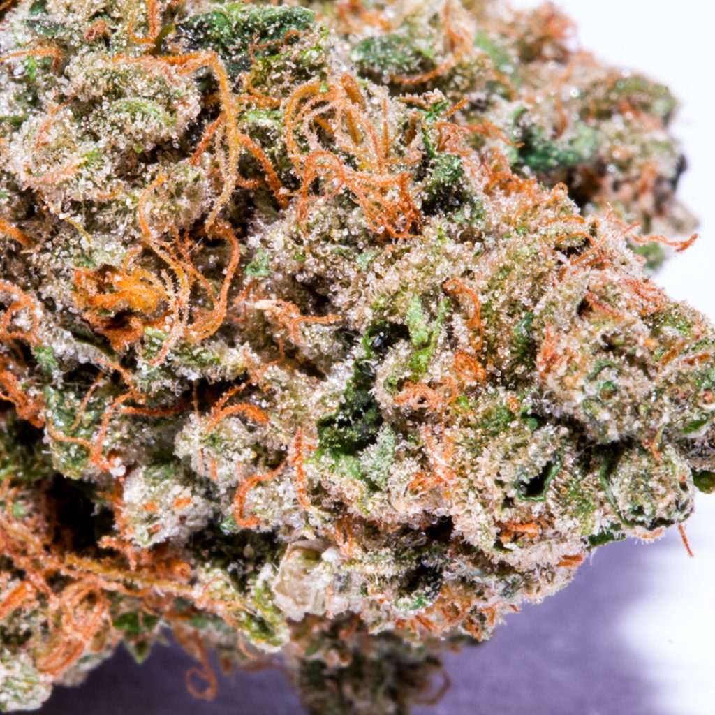 The Top 10 Best Marijuana Strains of 2016