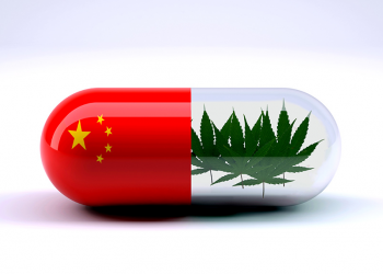 The Large, Strange History of Cannabis in China