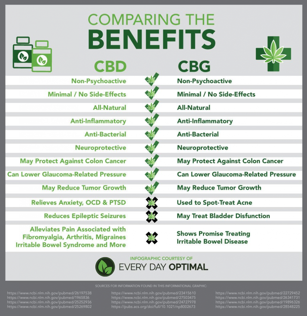 CBD vs CBG: Differences, Benefits, Uses and More