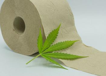 How Can I Buy Hemp Toilet Paper on Amazon?